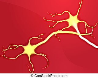 Neuron nerve cells - Illustration of neuron nerve cells...