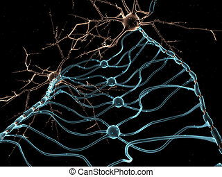 Neuron Oligodendrocytes - 3D rendering of Neuron...