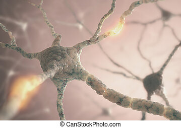 Neurons - Image concept of neurons from the human brain.