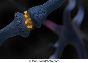 neurotransmitter synapse and neuron cells sending electrical signals 3d illustration