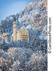 Neuschwanstein Castle in wintery landscape. Germany