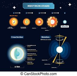 Neutron stars vector illustration. Educational labeled scheme with massive star stages to explosion. Cross section with structure and titles. Planet rotation explanation.