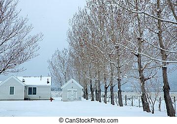 nevada, usa, eerst, sneeuw, in het park