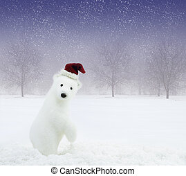 nevado, claus, urso, campo, santa, chapéu branco
