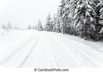 nevado, estrada, em, a, floresta