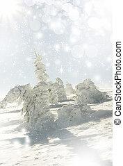 nevado, fundo, árvores abeto, natal, estrelas