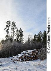 nevado, pilha, madeira
