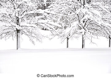 neve, árvores