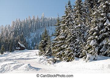 neve fresca, em, snoqualmie, ápice