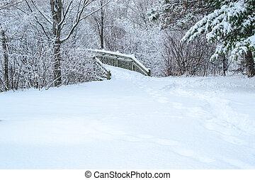 neve, fundo, inverno