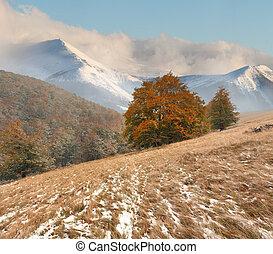 neve, manhã, ventoso, novembro, montanhas., primeiro