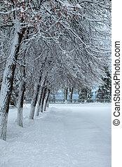 neve, park., inverno, dia