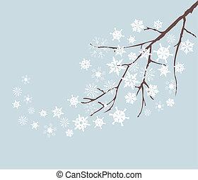 neve, ramo
