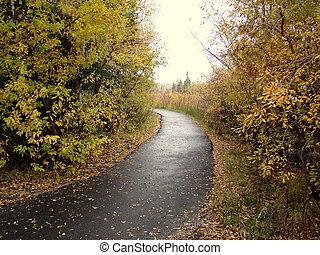 nevelig, herfst, spoor