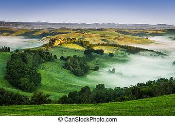 nevelig, vallei, tuscany, morgen
