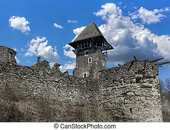 Nevitsky castle in the afternoon. Ruins of an ancient castle...