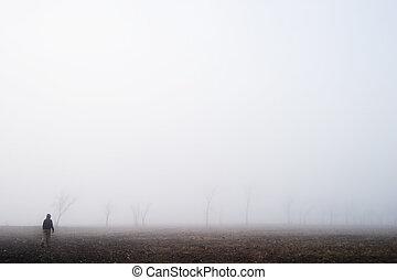 nevoeiro, passeio