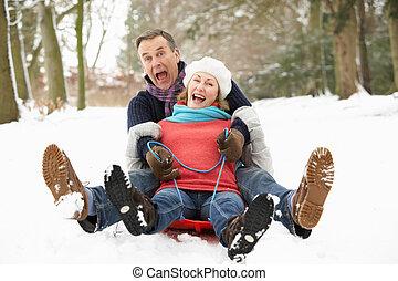 nevoso, coppia, terreno boscoso, attraverso, sledging,...