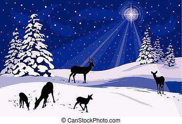 nevoso, paesaggio inverno, con, cervo