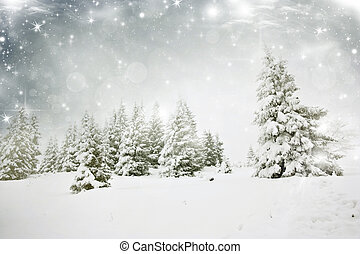 nevoso, plano de fondo, árboles de abeto, navidad, estrellas