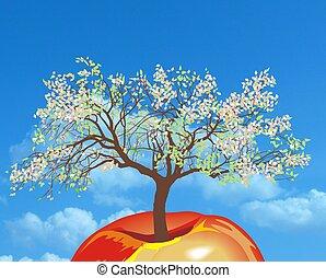New apple tree