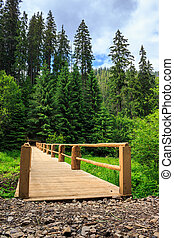 new bridge from road to forest. vertical - new wooden bridge...