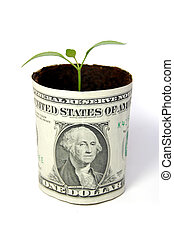 New business - New seedling growing from a one dollar note...