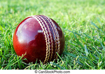 New cricket ball on grass.