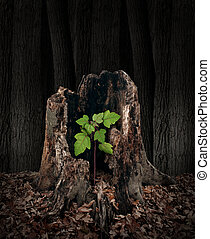 New development and renewal concept as a hollow old rotting tree stump with a growing green sapling emerging and replacing the past as metaphor for revival in business and in life and a symbol of hope with a vibrant future.