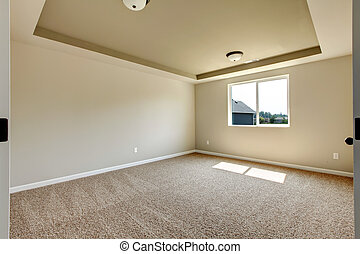 New empty room with beige carpet.
