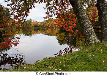 New England Foliage - A gorgeous autumn scene with a lake ...