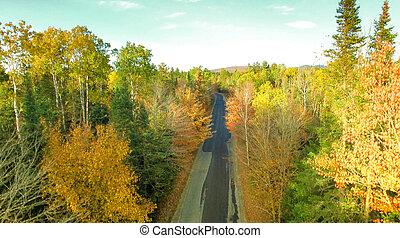 New England foliage in fall season. Aerial view
