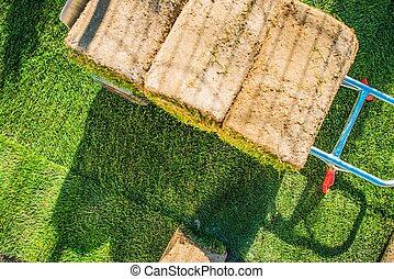 New Grass For the Garden