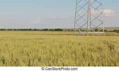 New high voltage power lines on poppy field in Crimea.