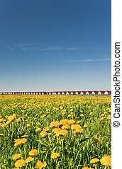 New houses range and dandelion spring field