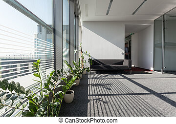 New interior - Interior of a modern building with grey sofa