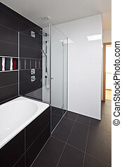 new large luxury modern bathroom