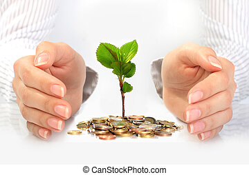 New life. Business concept. - Hands plant and euro coins.