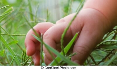 New life concept. Life beginning. Baby's hand on the grass. Human and nature.