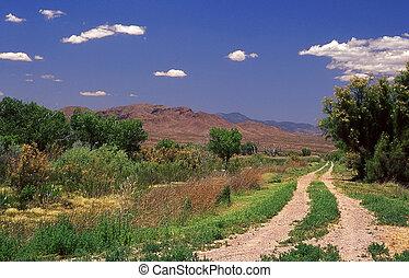 New Mexico Backroads