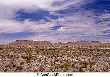 Southwest Desert landscapes are Timeless.