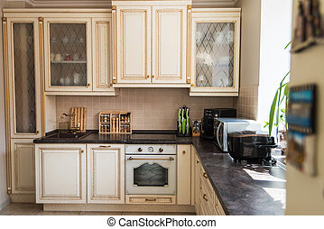 New modern kitchen interior