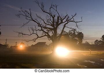New Orleans dawn