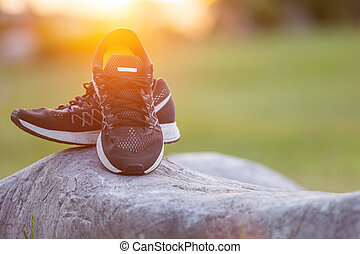 New pairs of black running shoes / sneaker shoes on green grass field in the park at sunset time. Worm tone, sunlight and lens flare effect with space for text or design