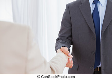 New partners shaking hands in bright office