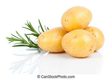 New potato with rosemary, isolated on white background