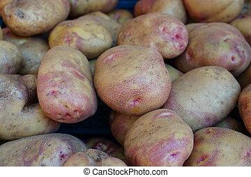 Close up of new potatoes