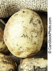 new potatoes in a bag of burlap