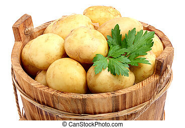 New, raw potatoes in a bucket.