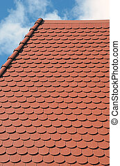 new roof fragment and sky